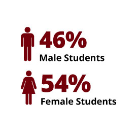 Infographic: Students: 46% male and 54% female